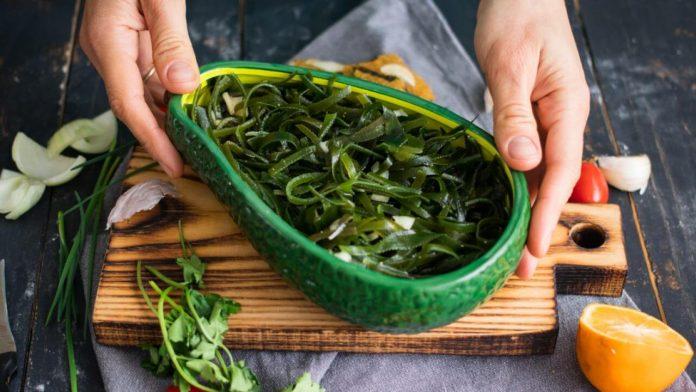 algas marinhas comestíveis