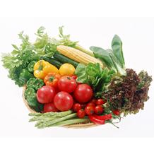 food_diet