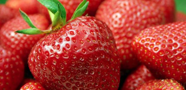 As frutas mais recomendadas para a dieta do leite