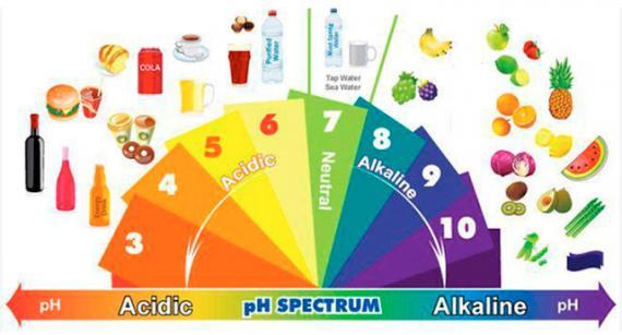 Confira quais alimentos fazem parte da dieta alcalina