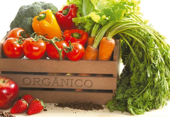 Alimentos-orgânicos-e-seus-benefícios-01 (1)