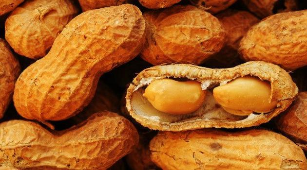 Emagreça-comendo-amendoim-01