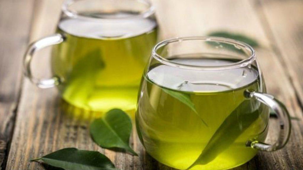 O chá de Oliveira e seus benefícios