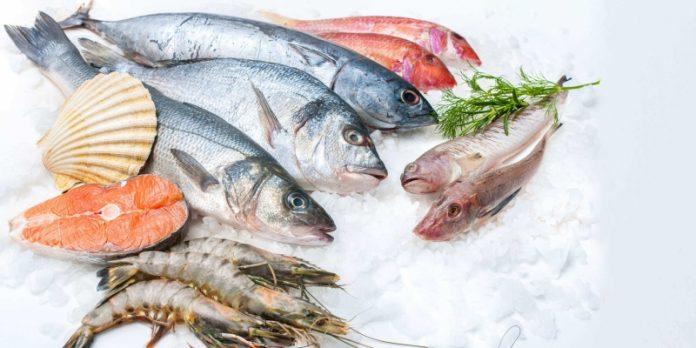 dieta do peixe