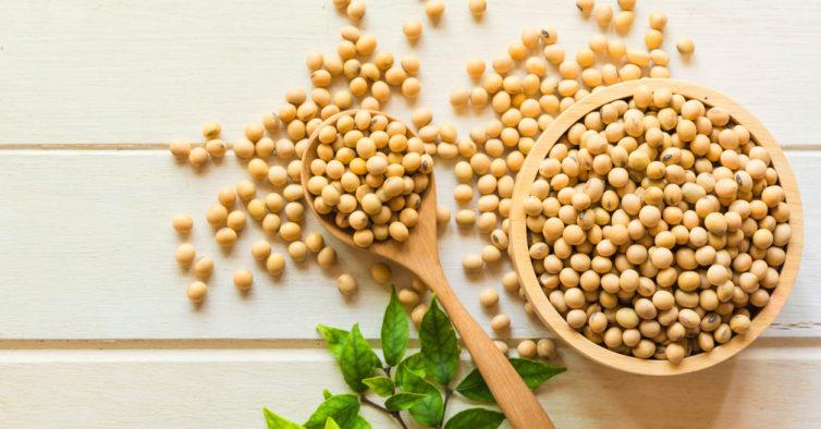 Alimentos de soja para emagrecer funcionam?!