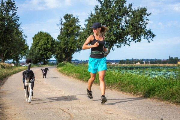 Correndo com os cachorros (1)
